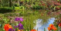 Monet's Gardens ,Giverny