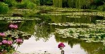 Monet¨s Gardens , Giverny