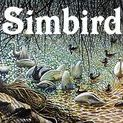 ART 4 SALE @ Simbird.com / Simon Mark Knott * My Art on PRODUCTS at Zippi including art on iphone, cases, bags, prints, canvas, mugs, keyrings, cushions... by Zippi Artist, Artwork, FineArt, Impressionistic styles of birds, wildlife, cats, kittens, landscapes, flowers by Simon Knott * MY WEBSITE *** simbird.com ***  Painting, BirdArt, OilPainting, AnimalArt, PetArt and BeeArt ARTISTGALLERY - ARTGALLERY - FINEARTGALLERY