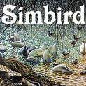 ART 4 SALE @ Simbird.com / Simon Mark Knott * My Art on PRODUCTS at Zippi including art on iphone, cases, bags, prints, canvas, mugs, keyrings, cushions... by Zippi Artist, Artwork, FineArt, Impressionistic styles of birds, wildlife, cats, kittens, landscapes, flowers by Simon Knott * MY WEBSITE *** simbird.com ***  Painting, BirdArt, OilPainting, AnimalArt, PetArt and BeeArt ARTISTGALLERY - ARTGALLERY - FINEARTGALLERY