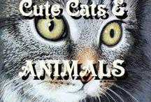 Cute Animal Art Cat Dog CatArt AnimalArt / Animal Cat Kitten Dog Art CatArt AnimalArt Wildlife by Simon Knott Artist UK British Wild Animals KittenArt PetArt CuteArt ANIMALART - CUTEDESIGNS - CUTEANIMALS - WILDART