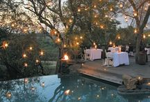 Outdoor Living / Ideas for sitting pretty in the great outdoors.