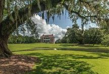 Visitor Photos / Photos by travelers who visit Drayton Hall.