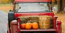 Fall in the Country / The crisp air, fall colors and pumpkin spice.
