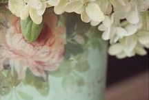 TEA LEAF. SAGE. MINT. PEACH. IVORY. / Combinations of greens, peaches, and whites.  / by Melissa Stephens