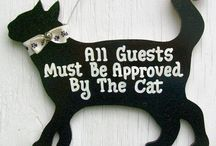 Pet stuff / Yay pet stuff. For ur partner in crime lol. / by Dorothy P
