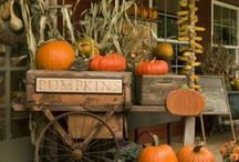 Decorating...for Fall/Halloween / by Bobbie Jenkins
