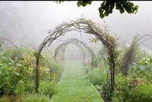 Garden / by Emily Ragsdale