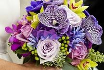 Wedding Flowers / by Julie Abner Stephens
