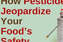 Food Allergies and Pesticides / Pesticides and your food what you don't know is bad for your health