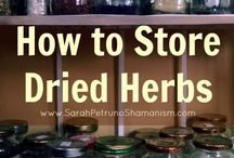 How to Store your Fresh Herbs / Storing herbs