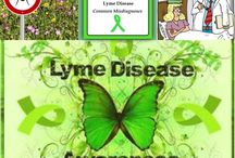 Healing Lyme Disease / Tips for healing Lyme Disease