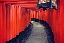 ♥ Love Kyoto / Let's Pin It together! You'll collect favorite Kyoto. Please add to this board about kyoto. No spam, No nudity, No advertising! If you would like to be added to this group, please send me an email with your pinterest profile link at : hatamotobiz@gmail.com. Happy Pinning!