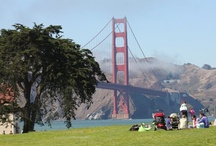 Travel: Bay Area pet friendly places