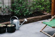 garden / by Jodie Nicholson