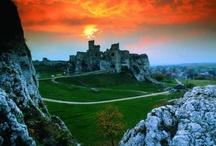 Castles and Palaces  in Poland / Zamki, palace, dwory w Polsce. / by Malgorzata ( Margaret)