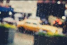 P H O T O :: rainy days