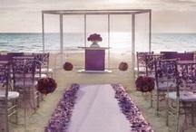 Our Wedding / Ideas for our fall, purple wedding <3 Can't wait to marry my best friend!  / by Matt Steffanina Dana Alexa