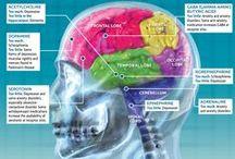 Psychology & Neuroscience