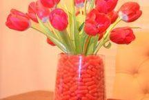 Valentine's Day  / by Mackenzie {Cheerios and Lattes}
