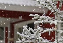 Winter 1 / A time for cold, snow, ice, and trying to keep warm.  And, sometimes a lot of aggravation.  Just telling the truth!  Happily, there's Christmas, New Years, Valentines Day, fireplaces, beautiful snowy views, winter sports and fun stuff to do.  / by Mary Connolley