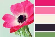 Cards - Sketches & Colour