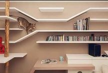 Cat friendly house / Dream home for our kitty friends / by CareerCounselorTips