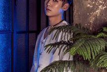 Hongseob 홍섭 [24K] / Name: Hongseob (홍섭)  Position: Vocal, Rap, Maknae  Birthday: 1998.01.08  Astrology: Capricorn  Nationality: Korean  Height: 177cm  Weight: 58kg  Skills: Dance