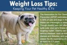 Entirely Pet Tips & How-Tos / Articles for pet owners from our Pet Blog and around the web / by EntirelyPets.com