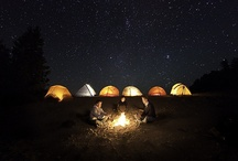 lets go bush / camping