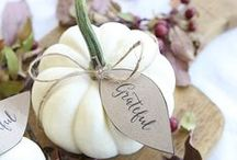 Thanksgiving Ideas / Inspiration for Thanksgiving decor, recipes, favors, wine labels, tablescapes, and so much more!