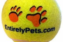 Top Black Friday/Cyber Monday Deals 2013 / by EntirelyPets.com