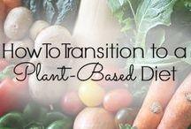 Vegan/Plant Based Recipes / Vegan recipes. Plant based & Gluten free recipes. Everything Vegan.