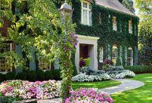 House - exterior / by Erin Everett