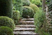 Gardens / by Marla Curtin