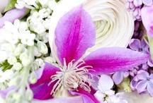 Mauve/Lilac april wedding by DON FLORITO