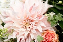 Vintage flowers by DON FLORITO