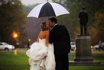 ::Colorful Weddings::