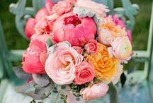 Wedding Flowers / by Erin Everett