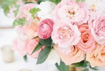 Pretty In Pink / Pink Weddings! All things pink for wedding inspiration