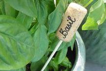 Gardening / A house becomes a home when you've planted a garden.