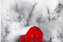 Barns / by Pat Zardi