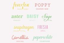 Fonts Fonts Fonts