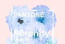 Color of the Year 2016 / Rose Quartz and Serenity, as dreamy as can be.