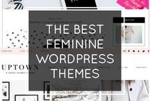 WordPress Themes / Collection of responsive WordPress Themes. Our professionally designed templates are suitable for social or business websites and online store.
