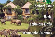 "SAFARI TOUR (BALI • LABUAN BAJO • KOMODO ISLANDS) / Join with us in different trip...   SAFARI TOUR Bali - Labuan Bajo - Komodo Islands 8 - 15 December 2016   BALI (4 Days 3 Nights) Tanah Lot, Kecak Dance, Barong Dance, Bali Zoo, Elephant Safari Park Lodge, Turtle Island, Pandawa Beach & Graha Wisnu Kencana (GWK)  LABUAN BAJO & KOMODO ISLANDS (3 Days 2 Nights) Pulau Rinca, Pulau Padar, Pulau Kalong, Pulau Komodo, Pink Beach, Manta Point, Labuan Bajo & Batu Cermin  For more information :  INDO TRAVEL NETWORK ""Everytime Can Travelling""  Whatsapp /"