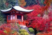 Japan Travel / Pictures and Inspiration to travel Japan. Ravenous Travellers   Travel Blog