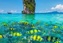 Thailand Travel / Thailand. Currently one of the most popular tourist destinations, and for good reason. Beautiful beaches, island paradises and jungle villages, the country has a lot to offer. We've put together a board containing our favourite pictures, ideas and sights to inspire you to visit. Ravenous Travellers   Travel Blog