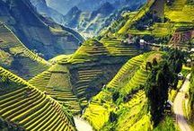 Vietnam Travel / Vietnam's best travel destinations, food and activities. Ravenous Travellers | Travel Blog