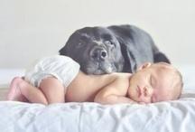 baby / by Franziska Hasselhof